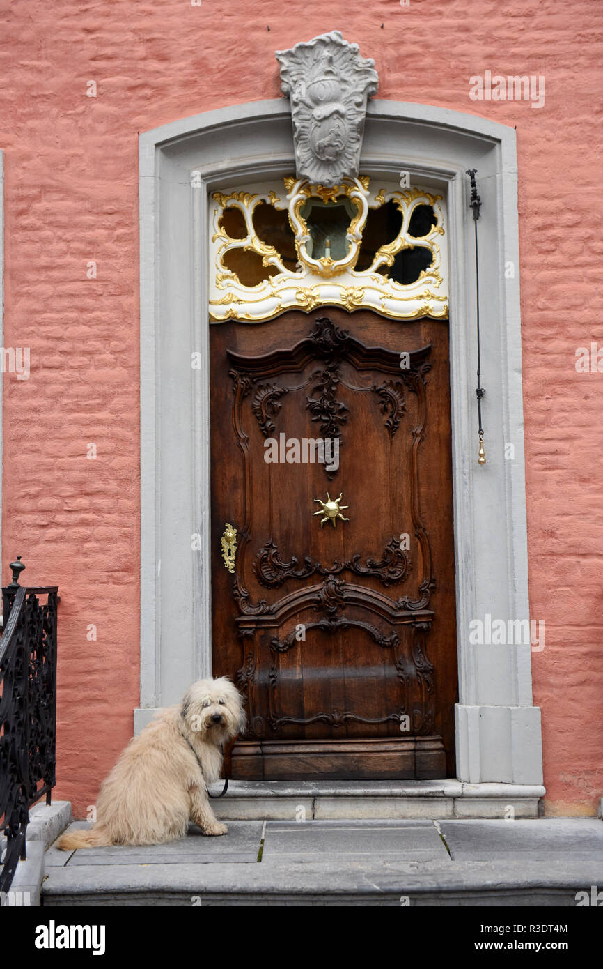 Pet dog waiting outside house Monschau in Germany - Stock Image