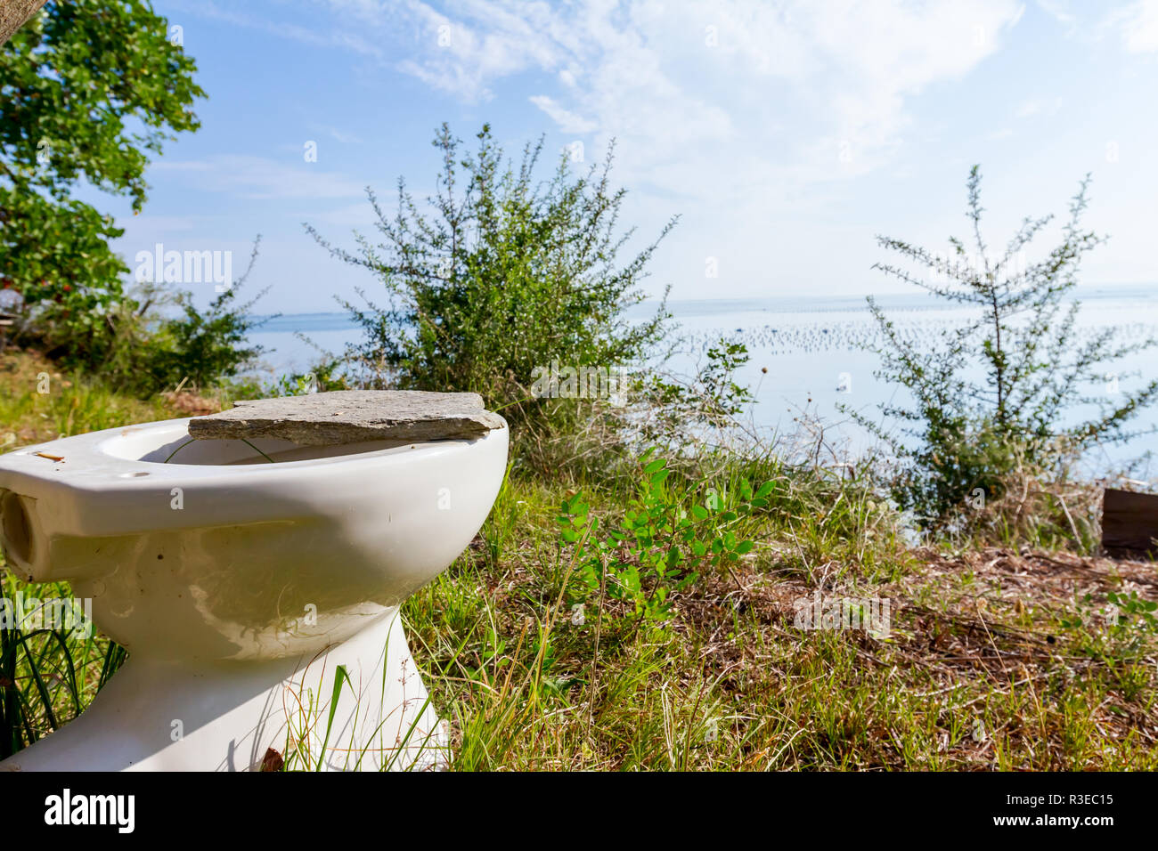 Ceramic old toilet bowl is in the orchard, field high above