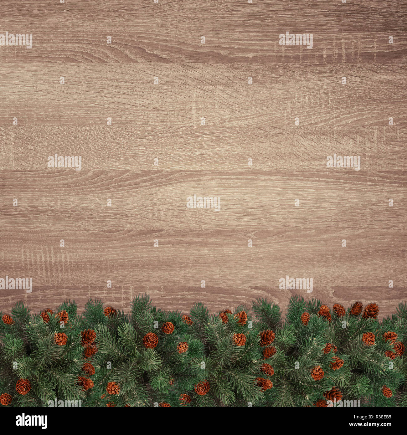 Evergreen fir branches on brown wooden texture background Stock Photo