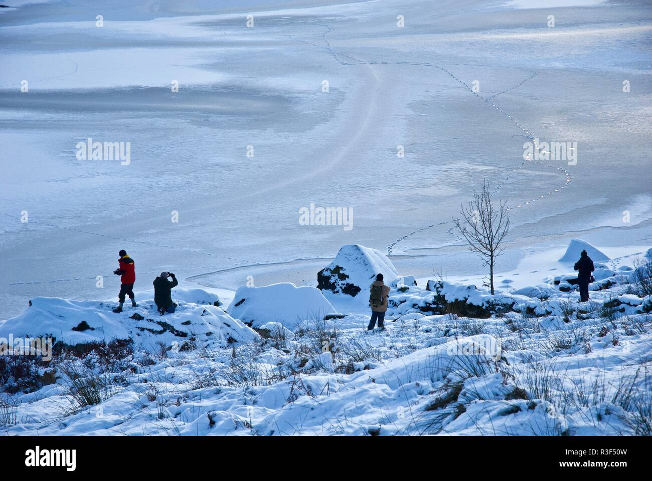 Walkers stop to photograph a frozen lake in a Winter landscape, Capel Curig, Snowdonia, North Wales, UK - Stock Image