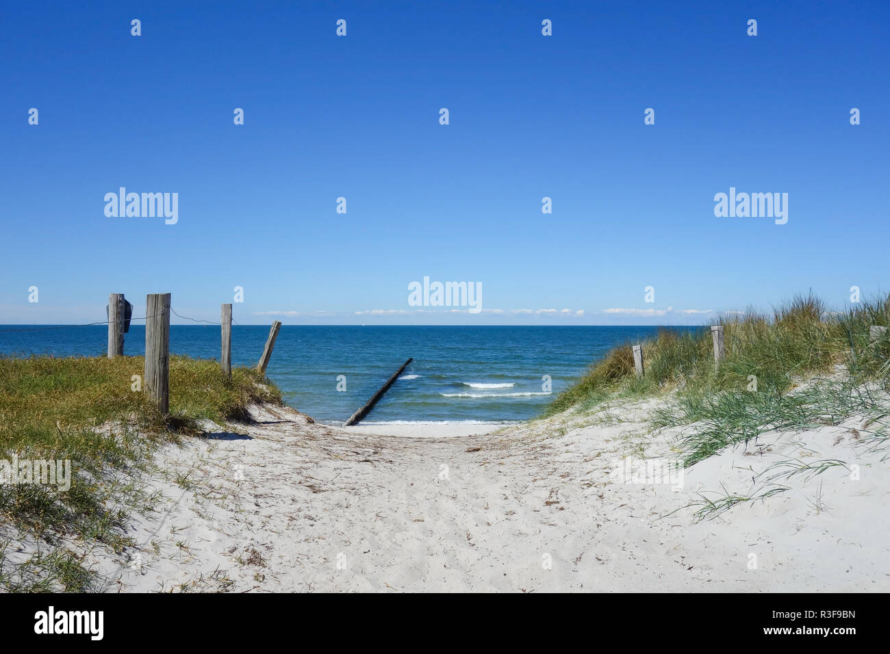Path to the beach on a dune on Hiddensee Island In Germany - Stock Image