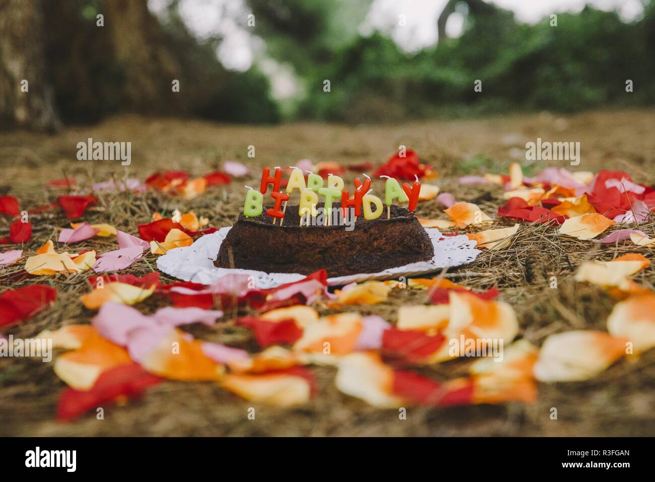 Strange Happy Birthday Cake With Letters Candles In The Forest Stock Photo Birthday Cards Printable Riciscafe Filternl