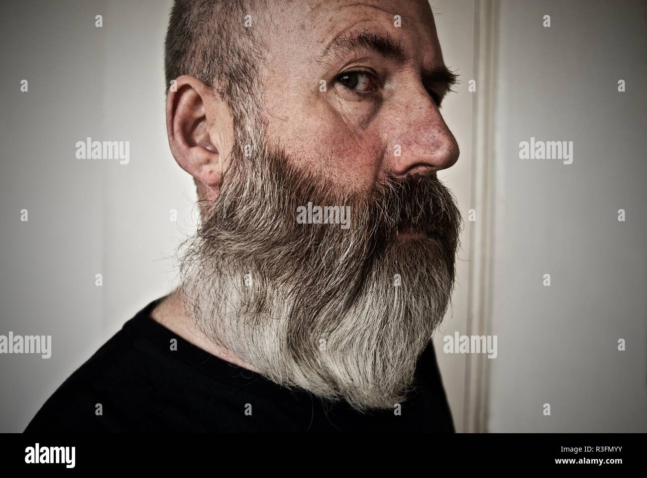 Bushy Grey Beard Stock Photos & Bushy Grey Beard Stock