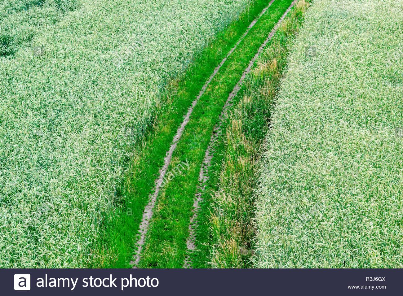 Feldweg aus der Luft - Stock Image
