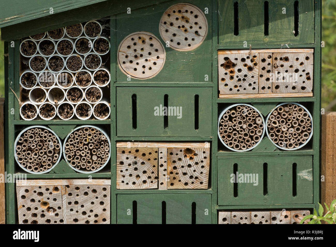 Insect or invertebrate house or bug hotel with various refuge options for hiding or over-wintering, WWT, West Sussex Stock Photo