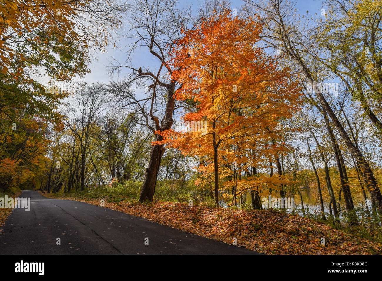 An autumnal view on Tryon Street along the Connecticut River in South Glastonbury, CT - Stock Image