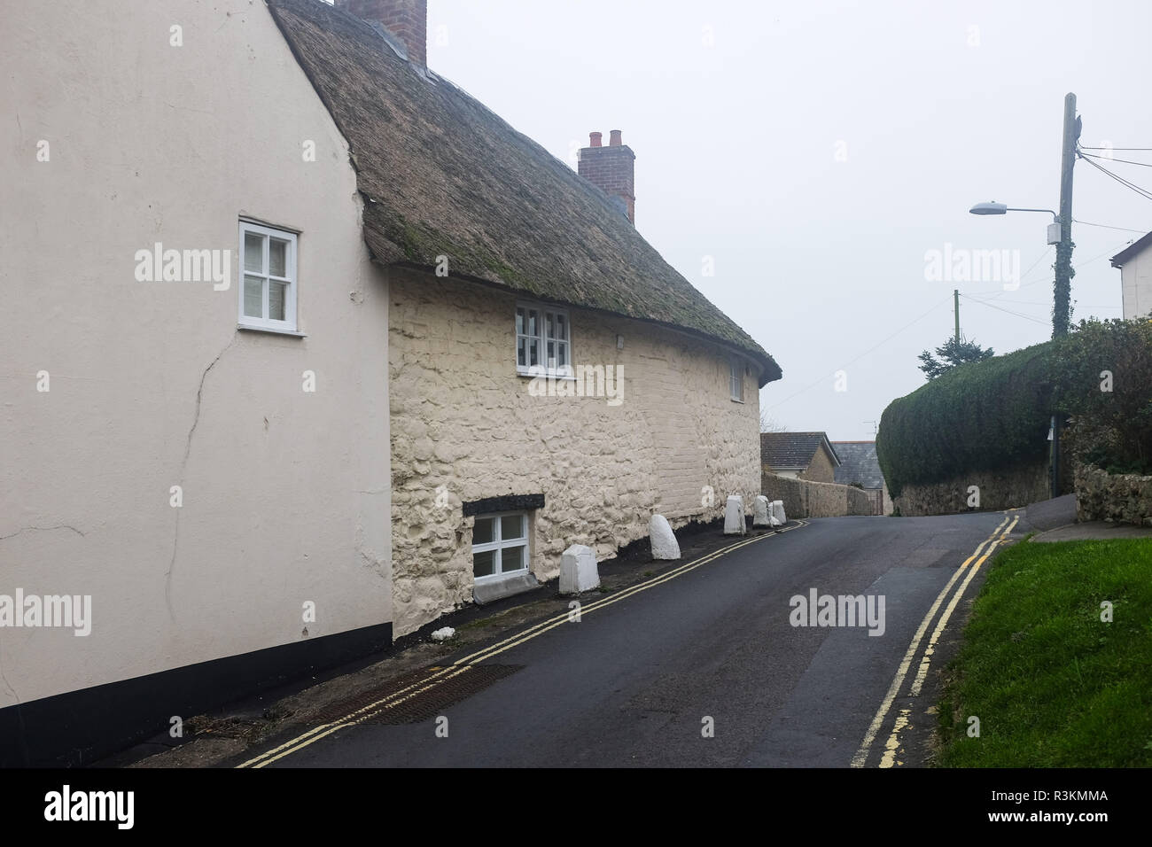 Old quaint thatched cottages in Charmouth in West Dorset UK Stock Photo