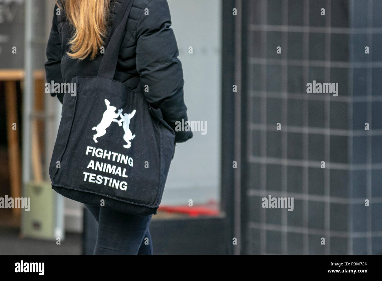Southport, Merseyside, UK. 24th November, 2018. Vegan Woman in town centre against science, medicine, animal welfare, animal rights, ethics, animal experimentation, animal research,  Vegetarianism, Credit: MediaWorldImages/AlamyLiveNews. - Stock Image