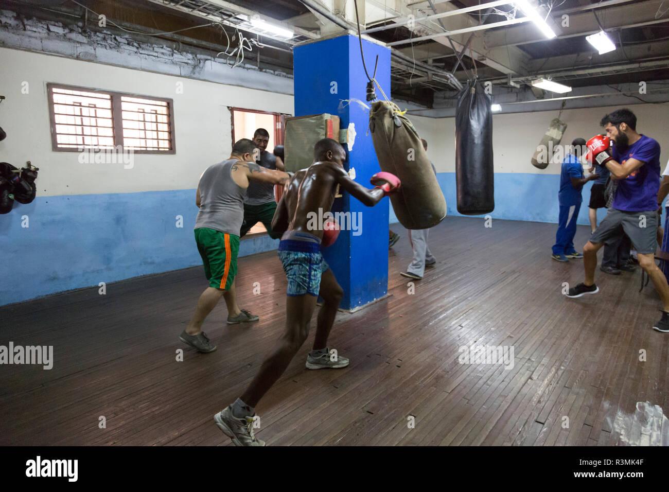 Cuba, Havana. Boxers training in gym. Credit as: Wendy Kaveney / Jaynes Gallery / DanitaDelimont.com Stock Photo