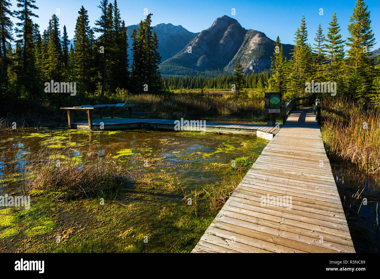 Boardwalk and interpretive signs at Cave and Basin National Historic Site, Banff National Park, Alberta, Canada - Stock Image
