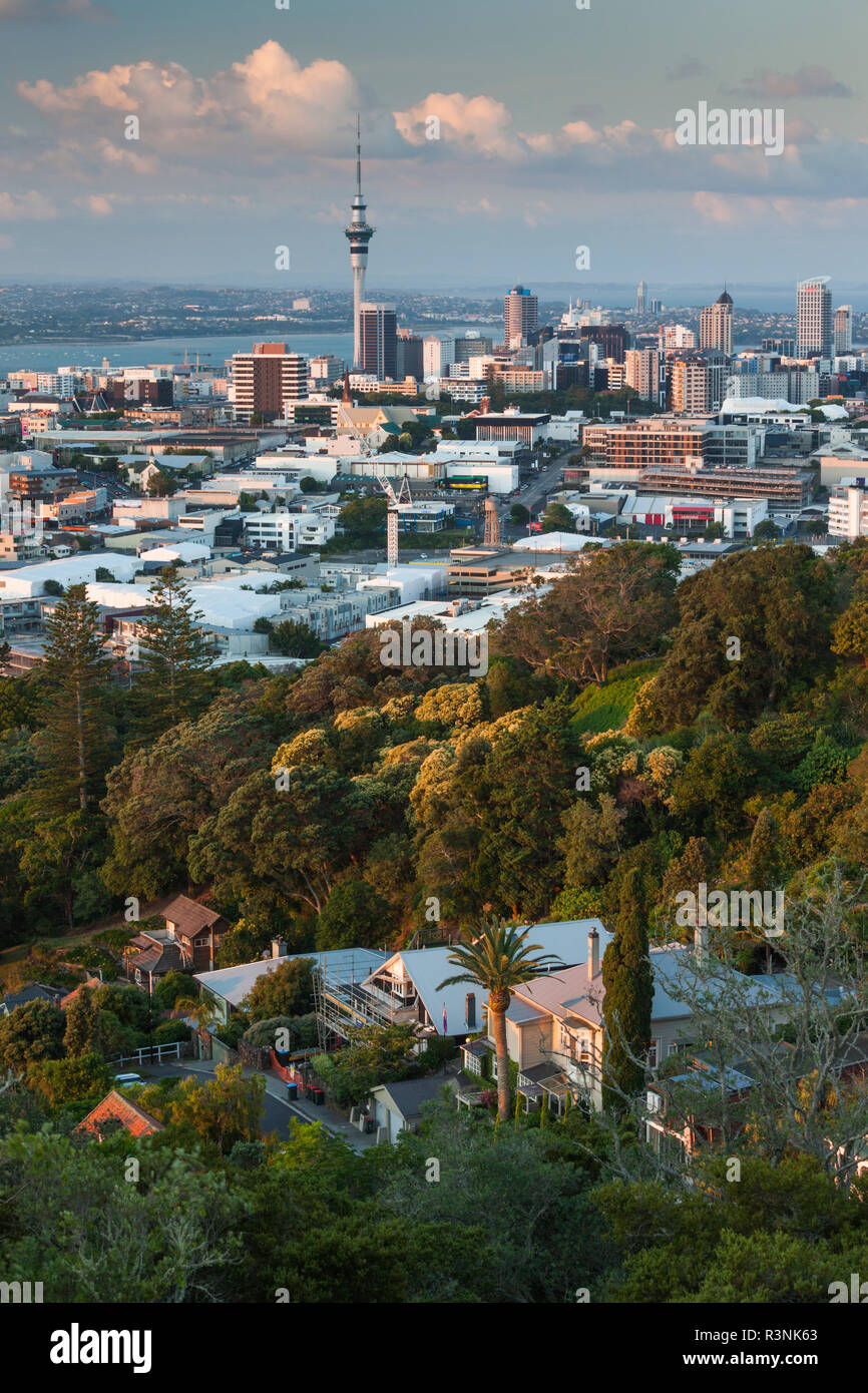 New Zealand, North Island, Auckland. Elevated skyline from Mt. Eden volcano cone - Stock Image