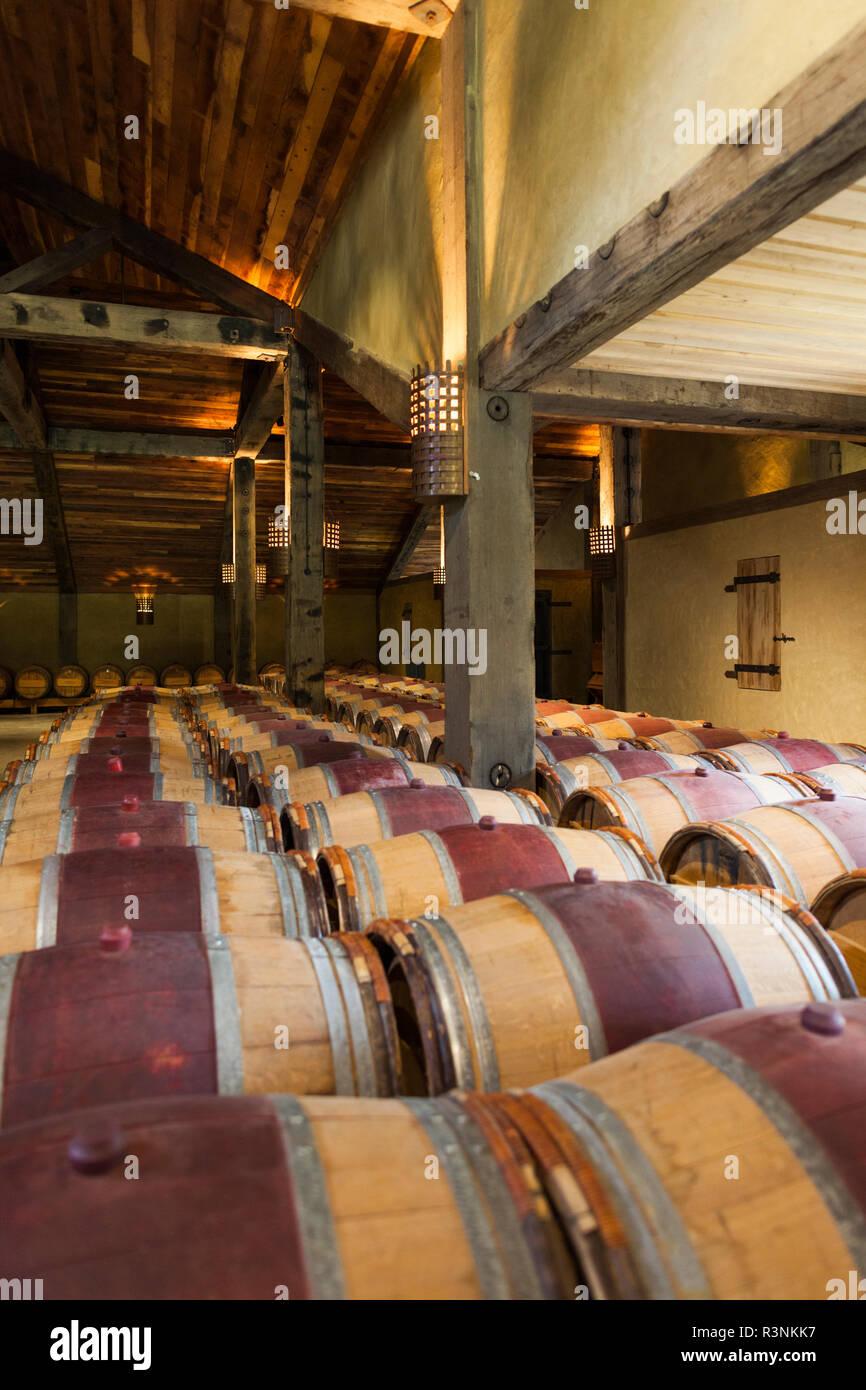 New Zealand Hawkes Bay Taradale Church Road Winery Wine Barrels Stock