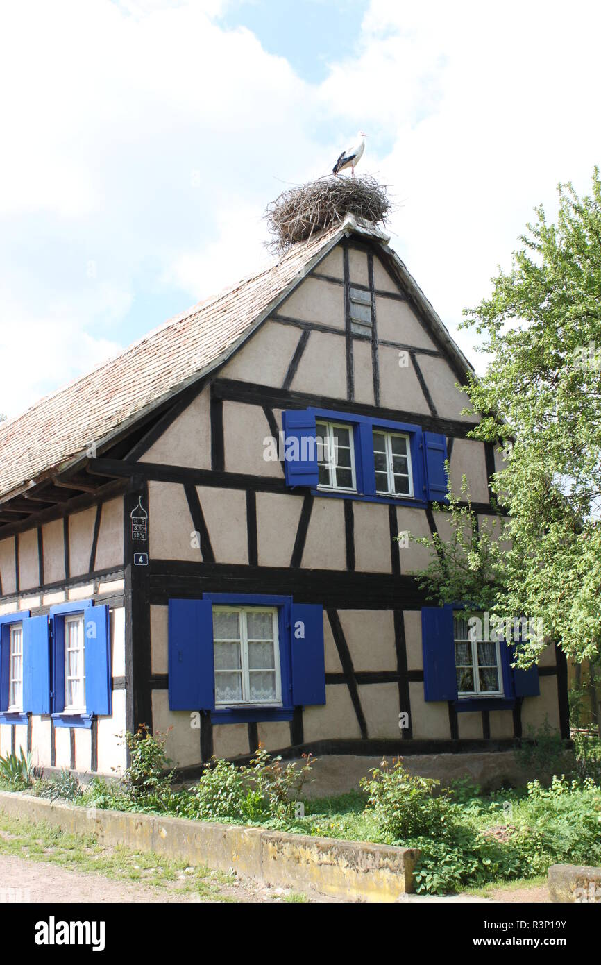 historic frame house with stork's nest on the roof. Alsace, France. - Stock Image
