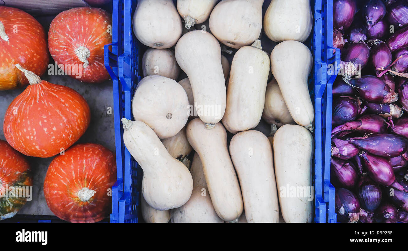 Top view of Farmers Market stall selling organic vegetables. Japanese Hokkaido pumpkins, butternut squash, purple onions Stock Photo