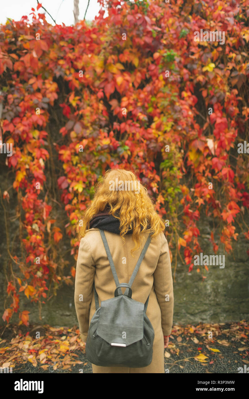 Woman standing against plant creeper during autumn - Stock Image