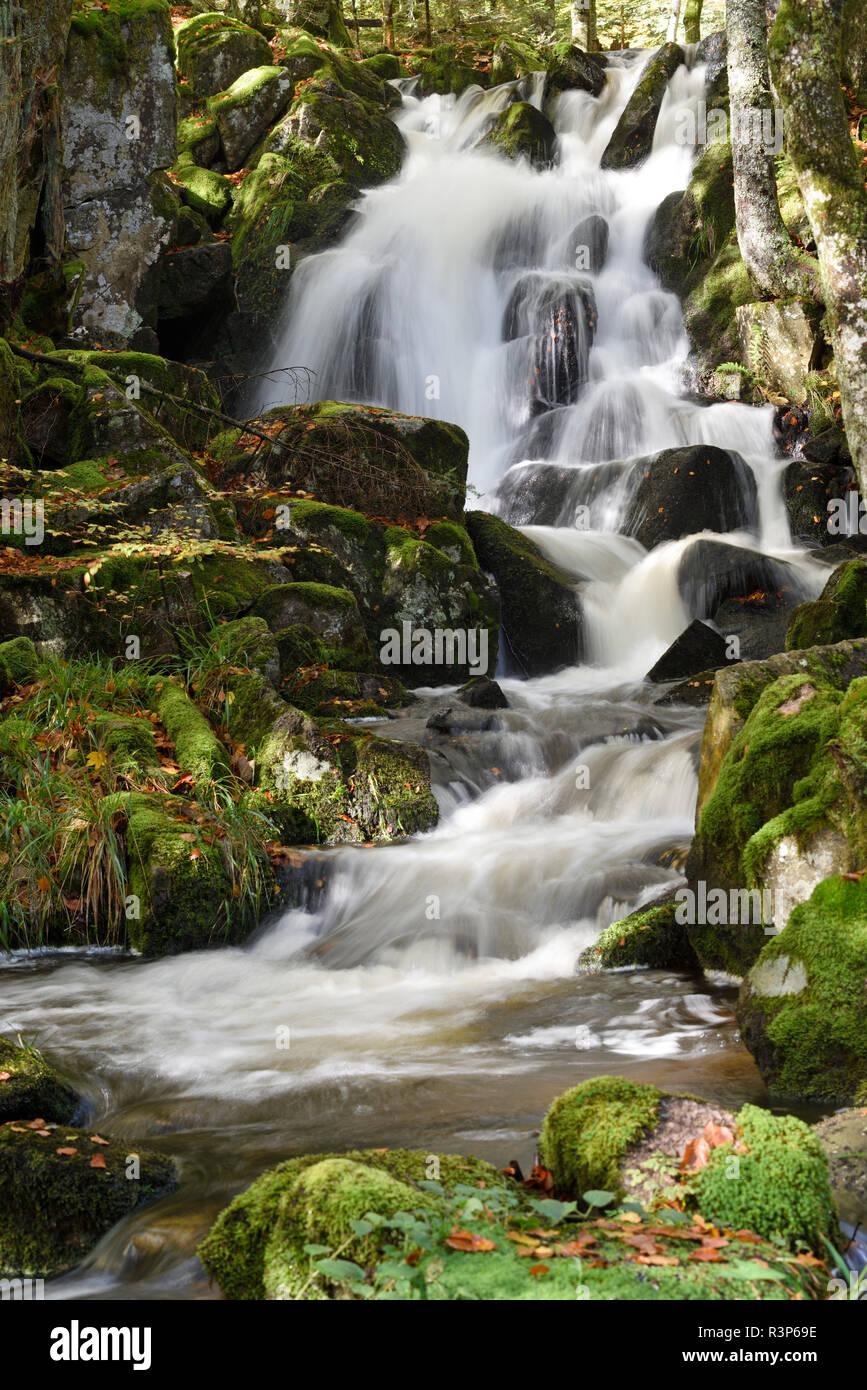 Rummel waterfall, La Savoureuse river in forest, Ballon d Alsace, Territoire de Belfort, France - Stock Image