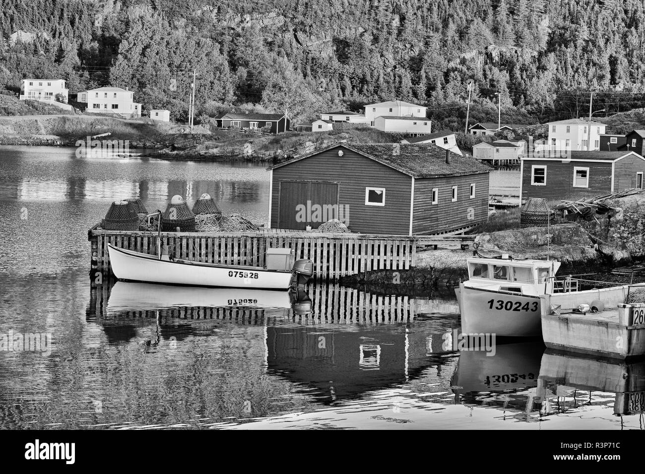 Canada, Newfoundland, Salvage. Black and white reflection of village in Bonavista Bay. - Stock Image
