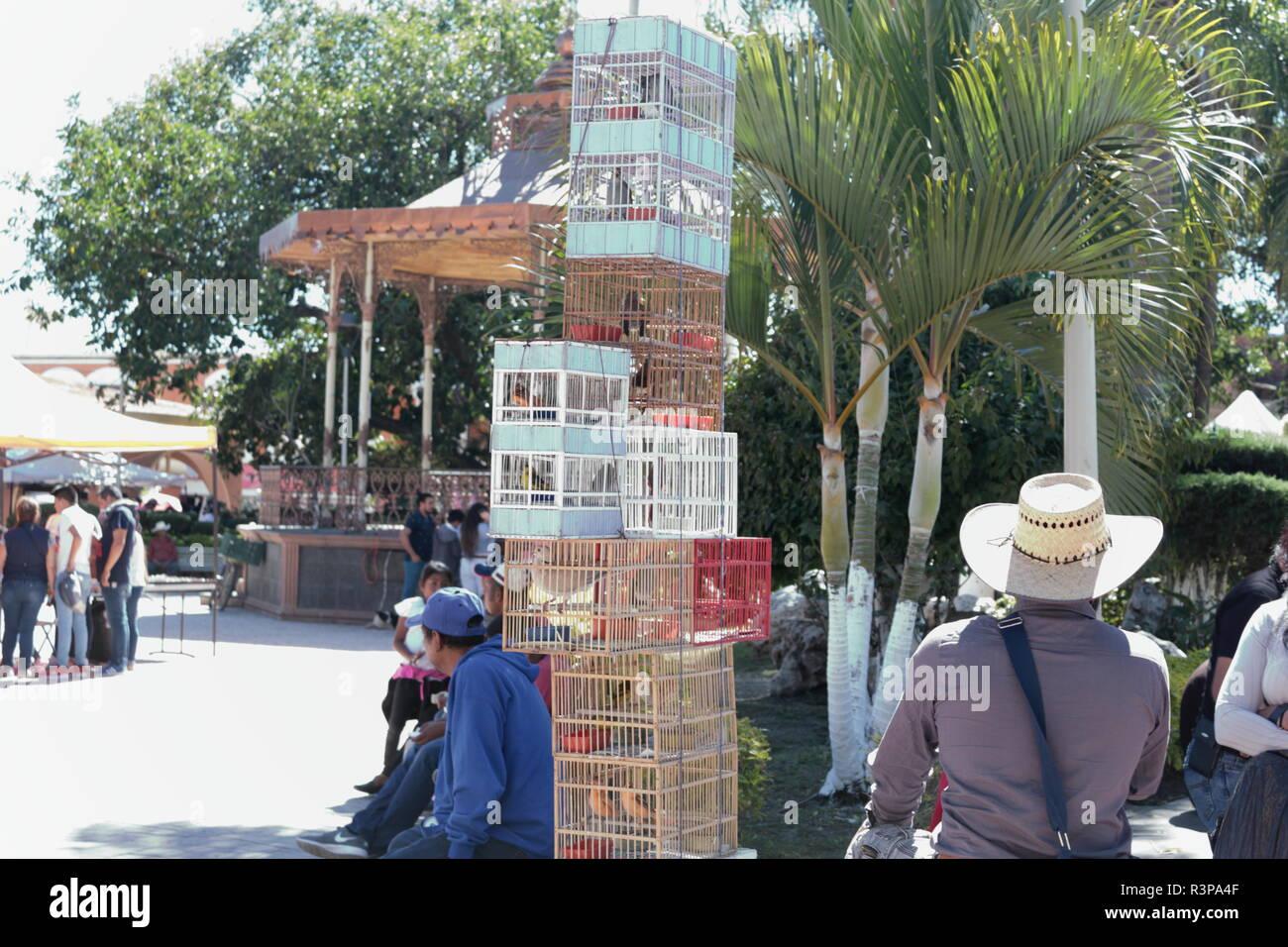 mercado municipal de Chapala Jalisco foto en la que se muestra un pajarero vendiendo en la plaza del mercado rodeado de gente que camina por el lugar - Stock Image