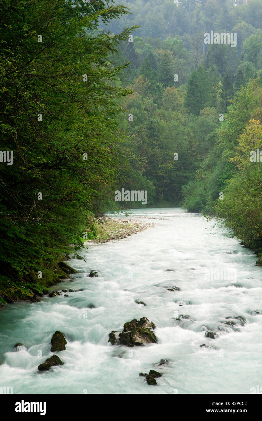 Europe, Germany, Berchtesgaden. River flows through forest. - Stock Image