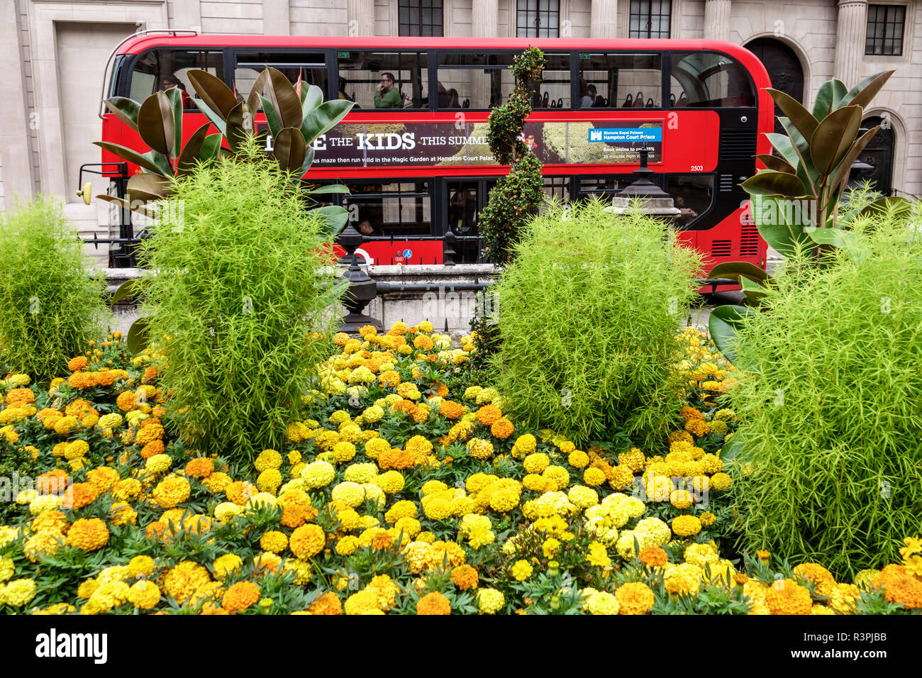 London England Great Britain United Kingdom City of London financial centre center Royal Exchange building outside exterior plaza garden flowers mums - Stock Image