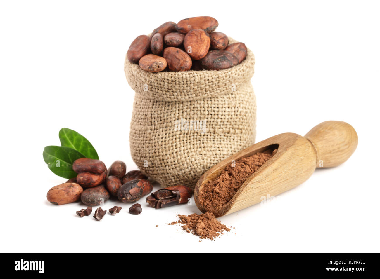Cocoa beans in bag with leaves and cocoa powder in scoop isolated on white background - Stock Image