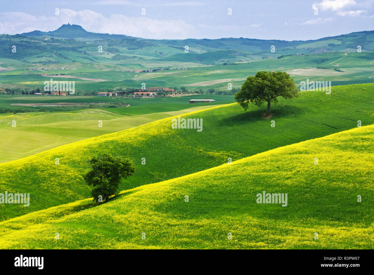 Italy, Tuscany. Landscape with villas. Credit as: Dennis Flaherty / Jaynes Gallery / DanitaDelimont. com - Stock Image