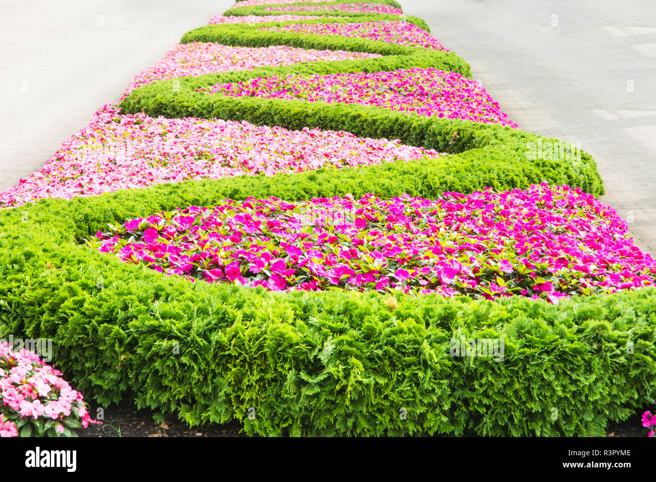 Floral pattern in a park Stock Photo