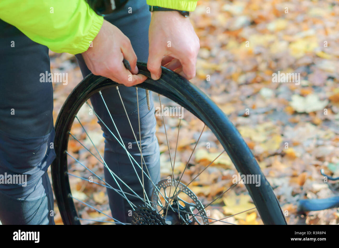 remove the tire from the wheel, disassemble the Bicycle wheel, repair the puncture of the bike - Stock Image
