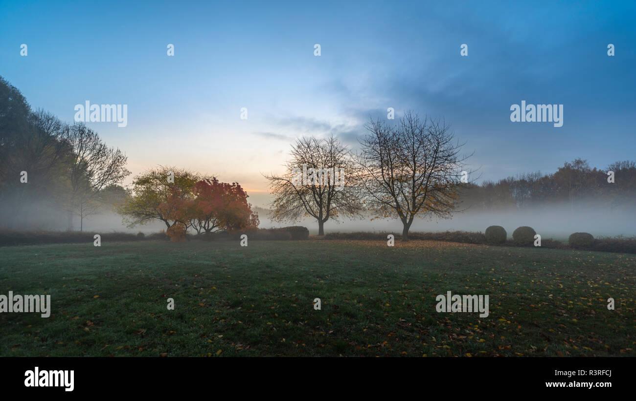 Tiefer Nebel im Herbst über der Wiese   Leipzig Silbersee - Stock Image