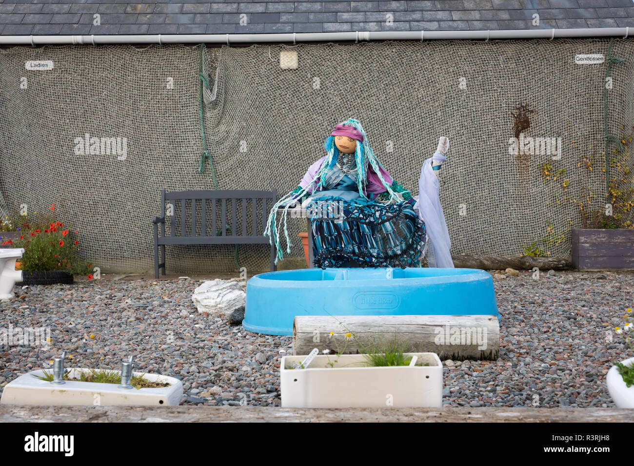 Guardian of the public toilet in Hillswick - Stock Image