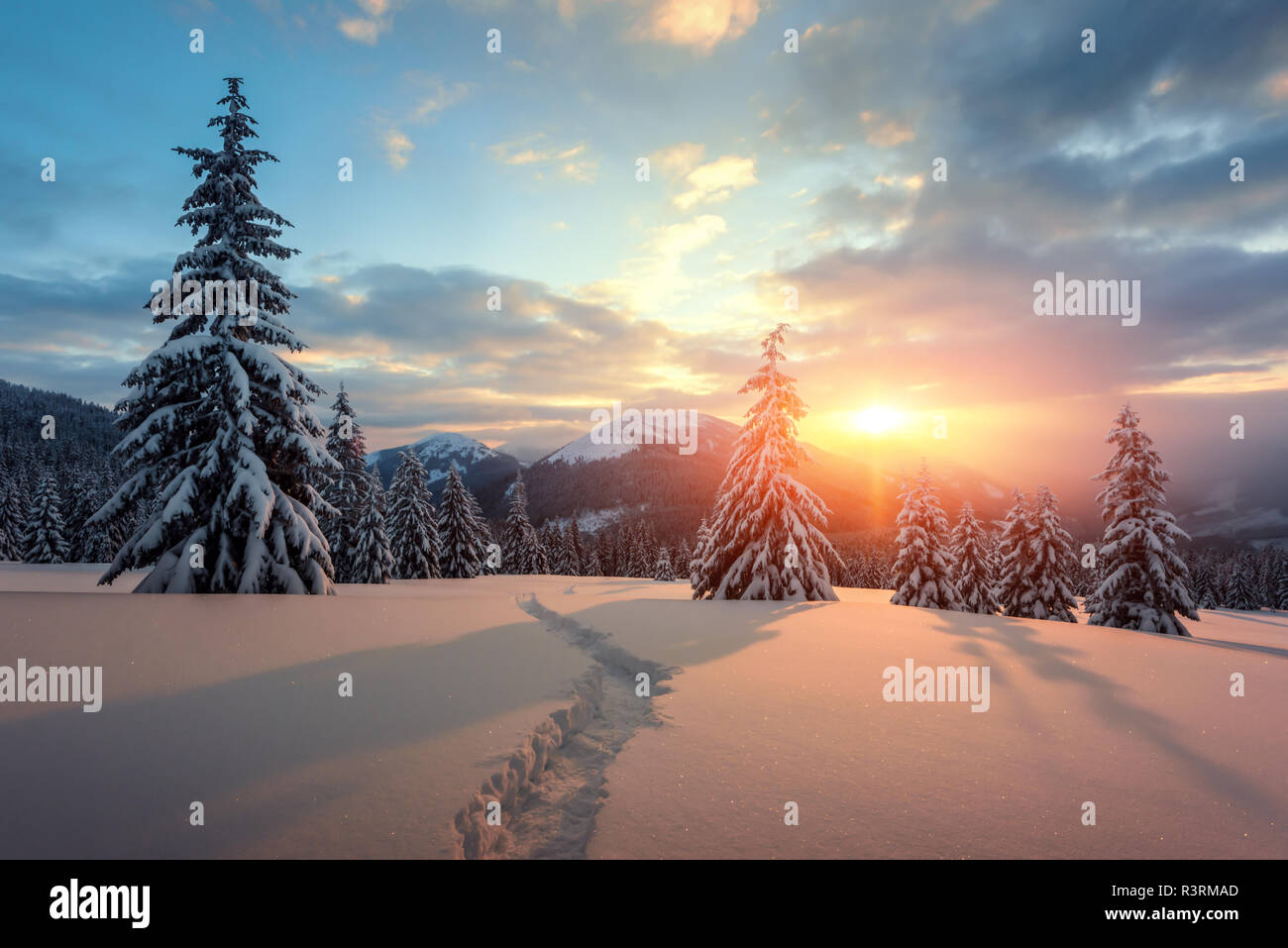 Fantastic orange winter landscape in snowy mountains glowing by sunlight. Dramatic wintry scene with snowy trees. Christmas holiday concept. Stock Photo
