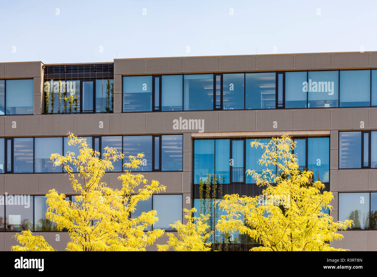 Germany, Karlsruhe, Office building with passive house standard at Kreativpark - Stock Image