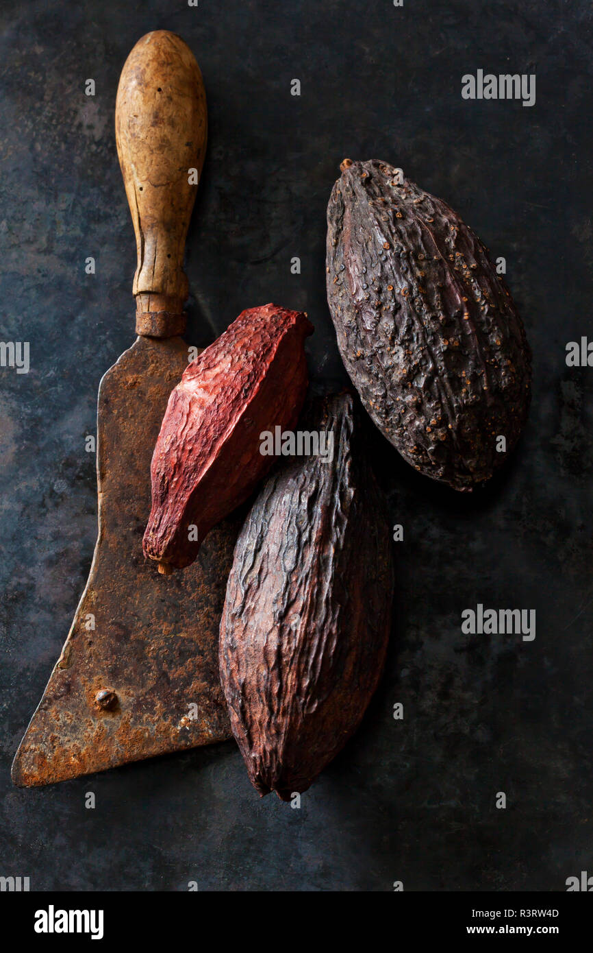 Cocoa fruit on an old cleaver - Stock Image