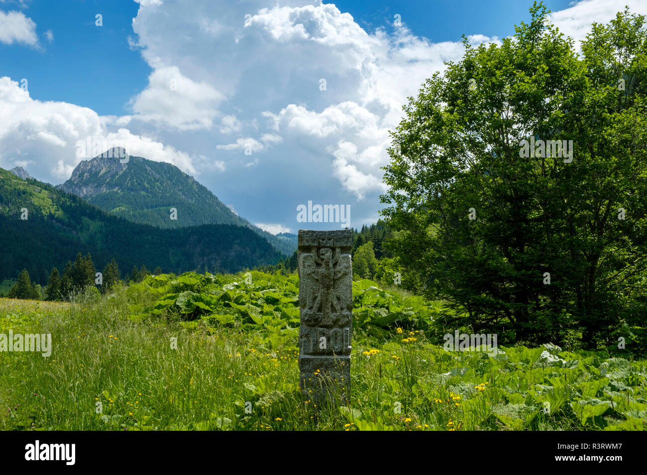 Austria, Tyrol, Tannheim Valley, enge Valley near Graen, landmark and Seichenkopf - Stock Image