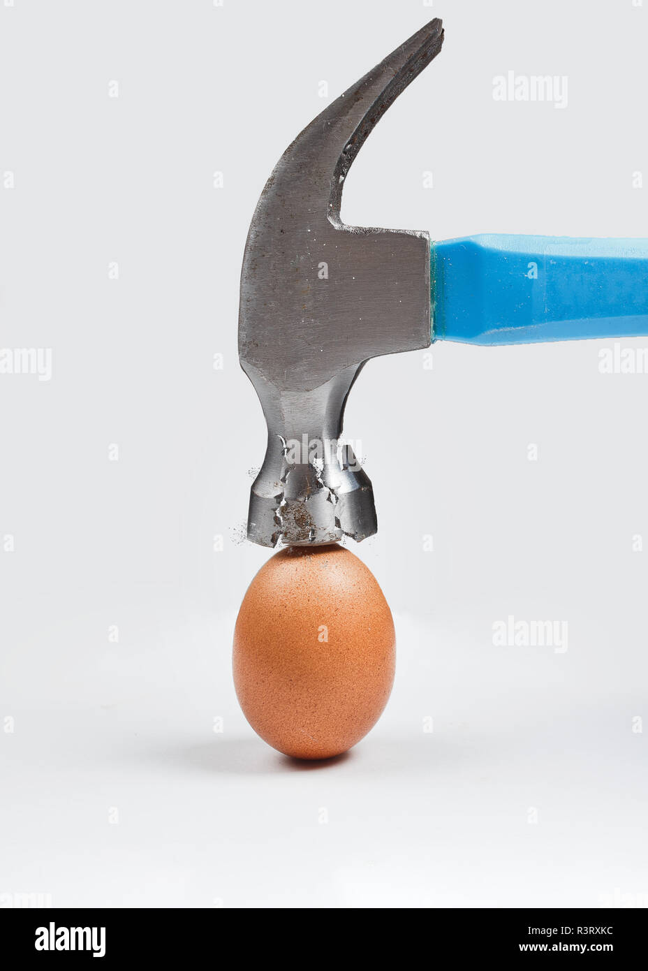 Hammer is breaking chicken egg. Concept of strength, durability, stress resistance and fortitude. - Stock Image