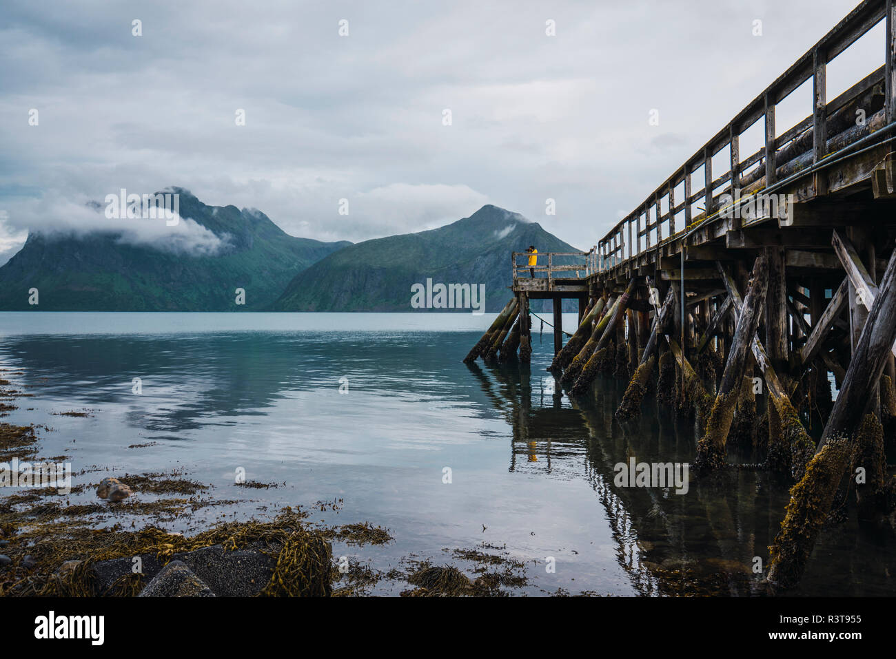 Norway, Senja island, man standing on a jetty at the coast - Stock Image