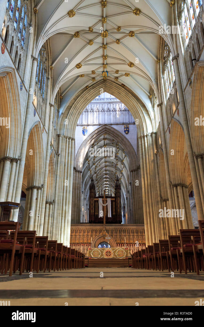 English gothic style cathedral and Metropolitical Church of Saint Peter in  York, or York Minster. Decorated Gothic Nave.