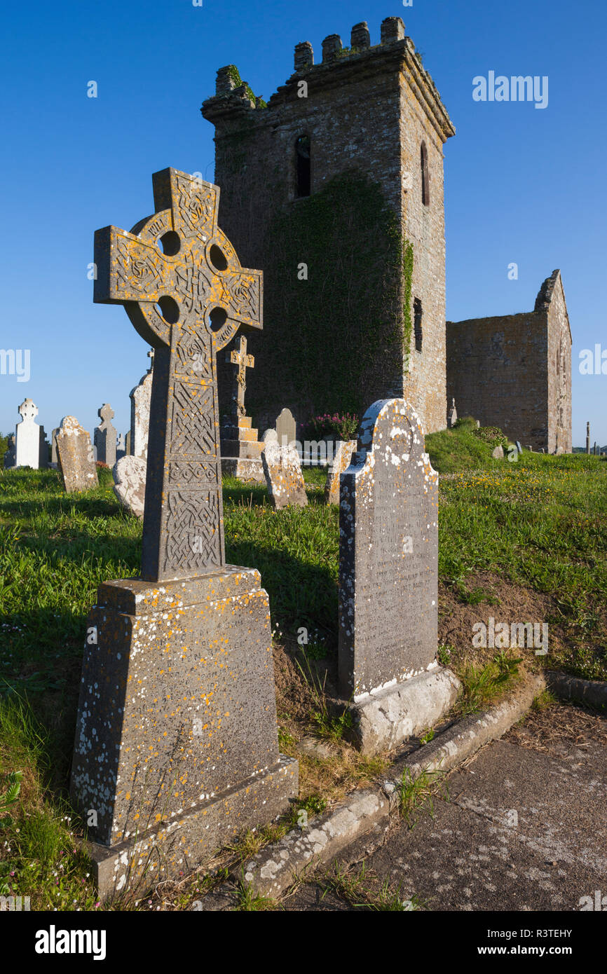 Ireland, County Wexford, Hook Peninsula, Templetown, Templar's Church ruins founded by The Knights Templars - Stock Image