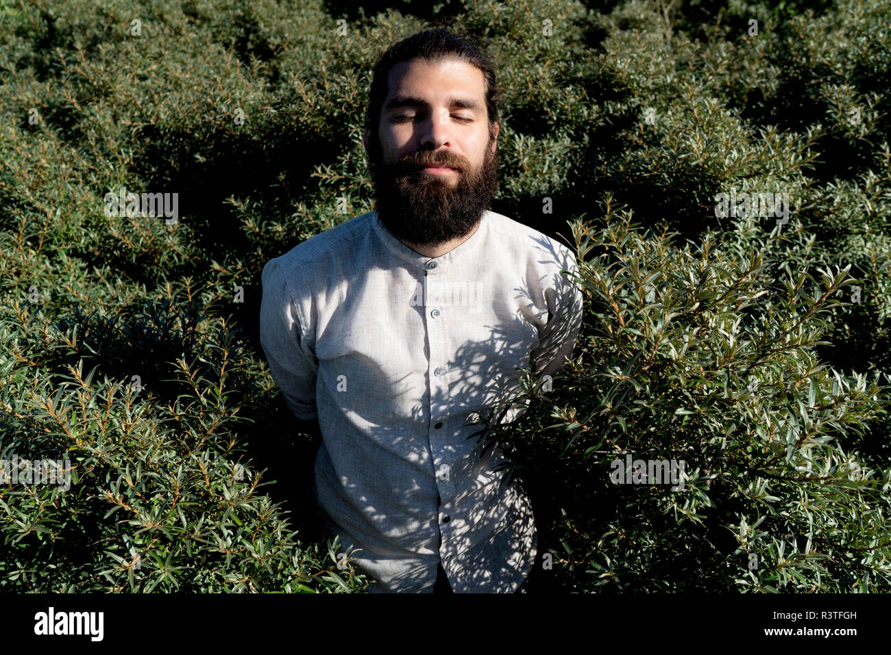 Young mna standing in shrubbery, enjoying the sun - Stock Image