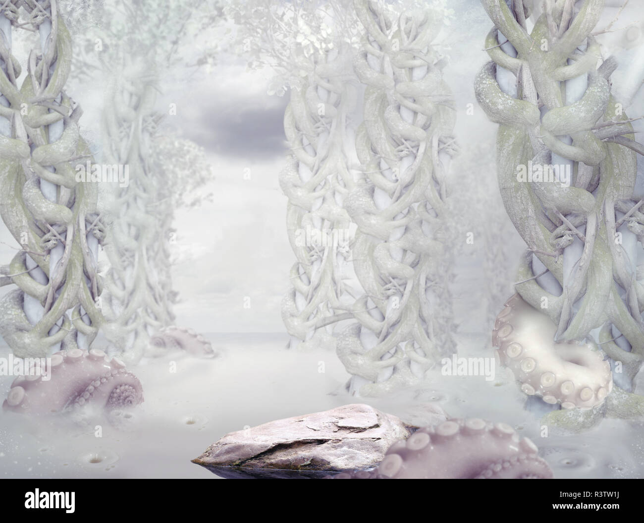 Mystery. Surrealistic Mysterious White Forest Stock Photo