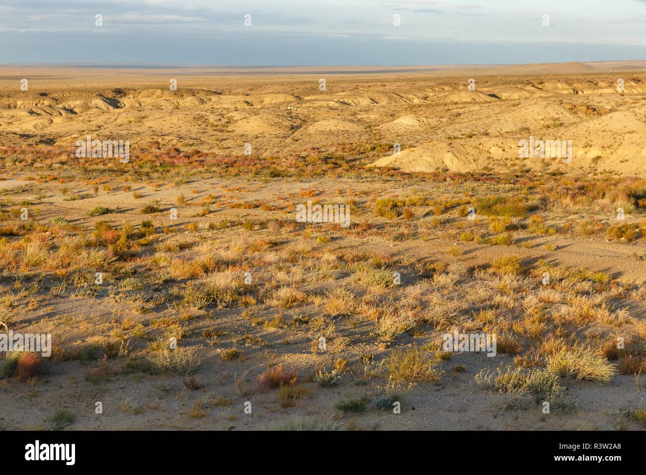 gobi desert mongolia - Stock Image