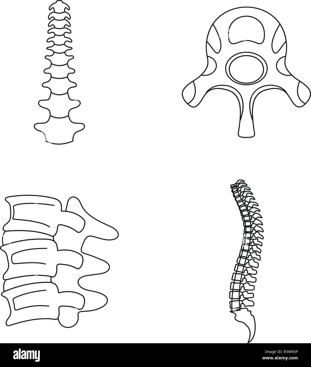 Spine orthopedic vertebra icons set. Outline illustration of 4 spine orthopedic vertebra vector icons for web - Stock Image