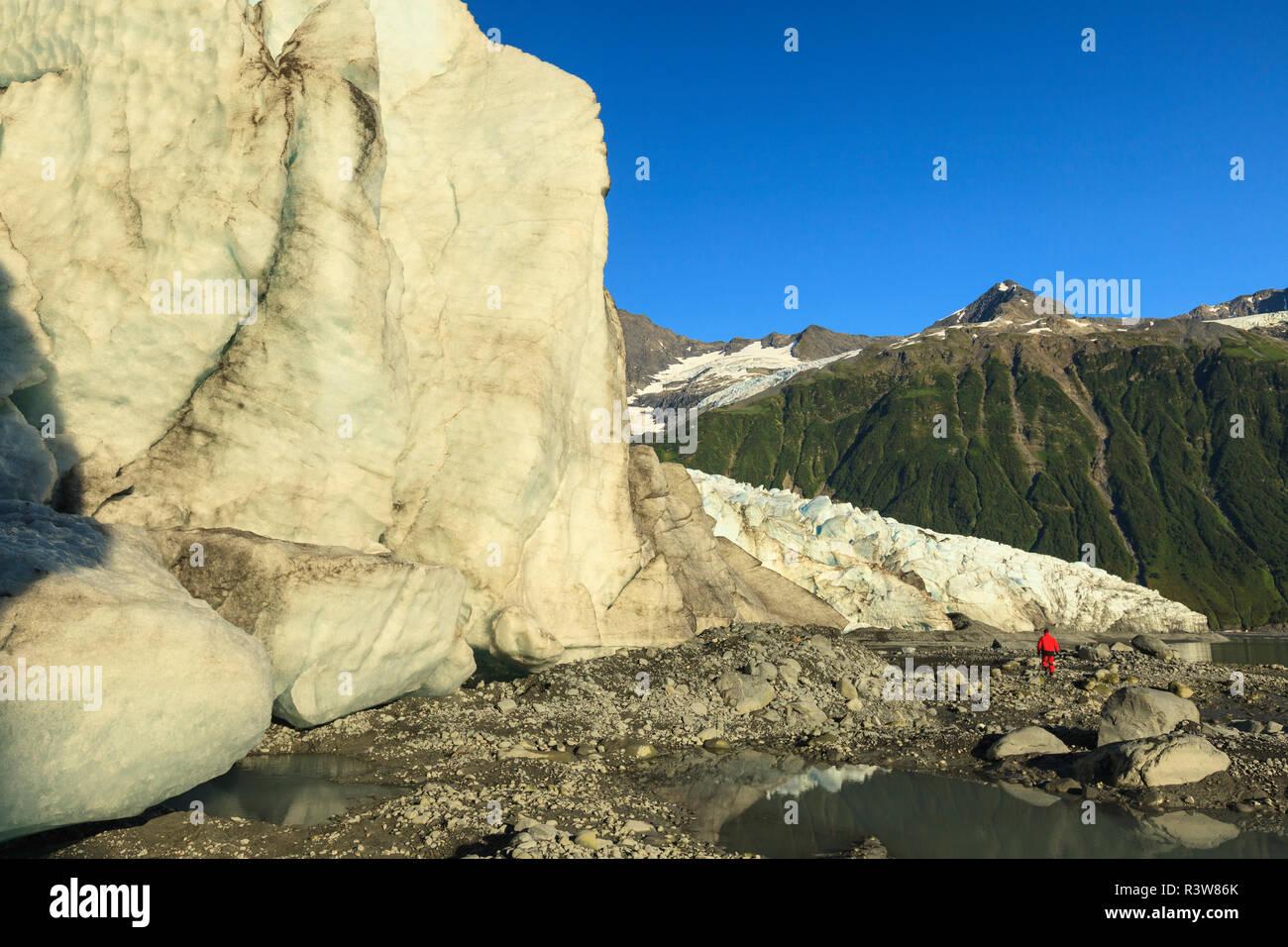 Ecotourist, Harriman Fjord, Chugach Mountains, Chugach National Forest, Prince William Sound, Alaska (MR) - Stock Image