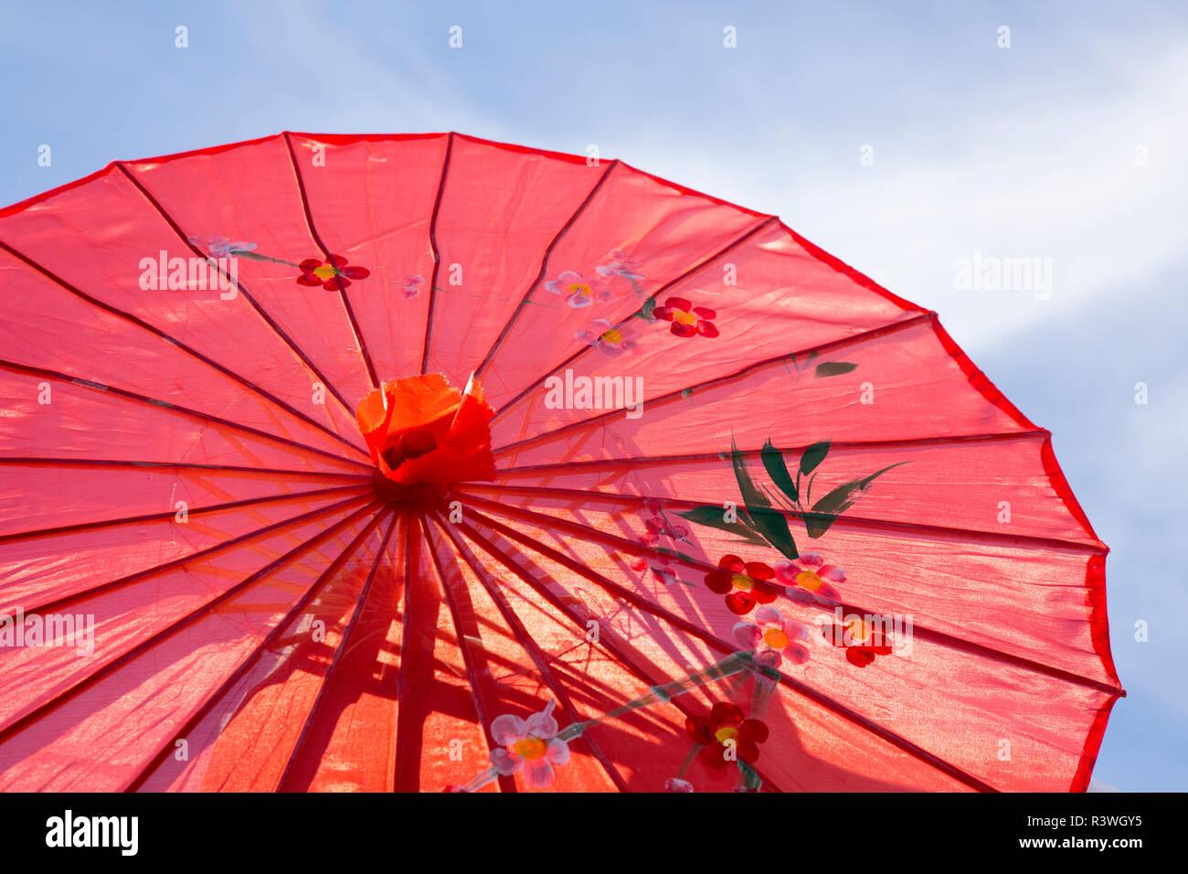 USA, Arizona, Phoenix. Close-up of Chinese parasol. Credit as: Wendy Kaveney / Jaynes Gallery / DanitaDelimont.com Stock Photo