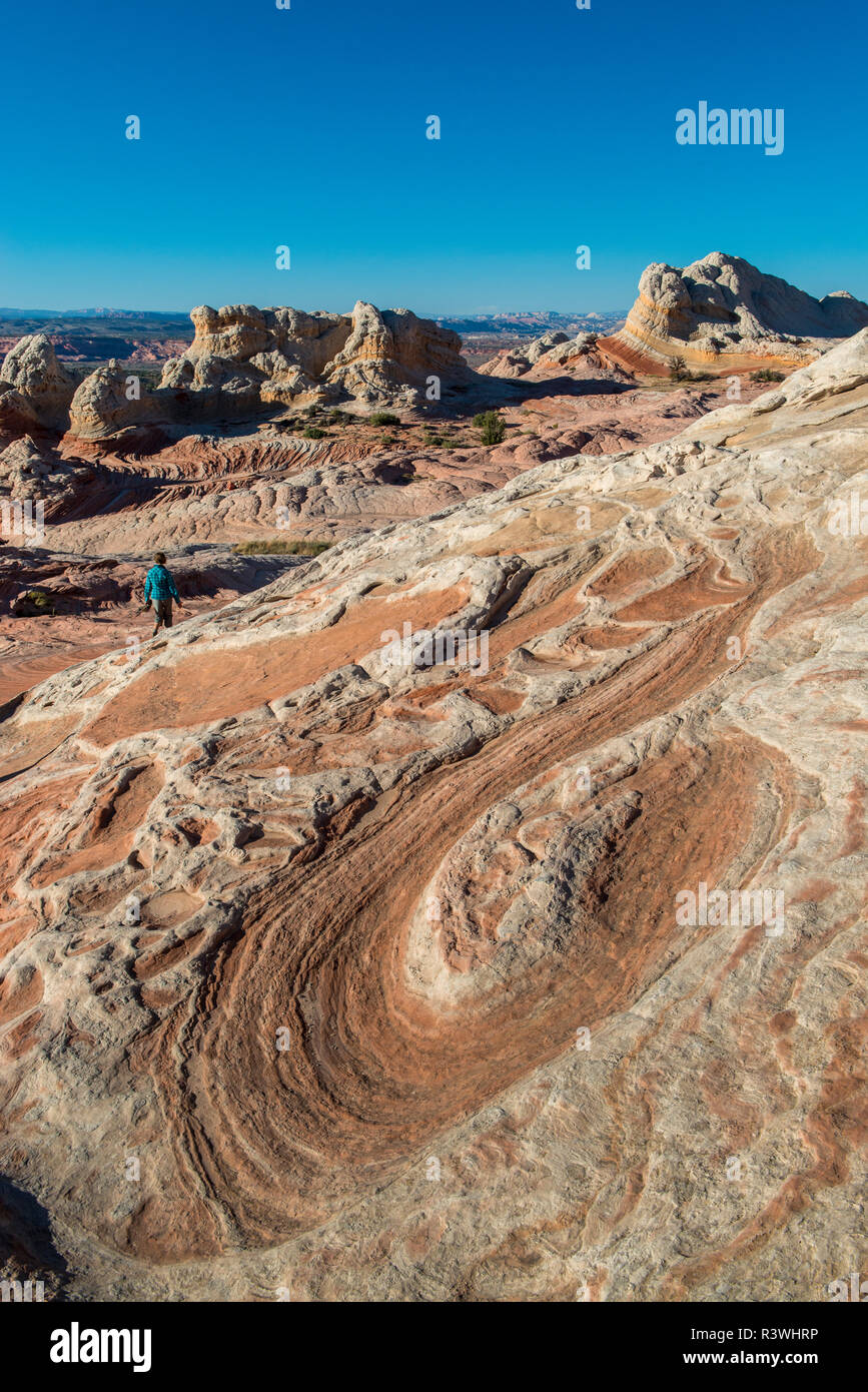 Vermillion Cliffs, White Pocket wilderness, Bureau of Land Management, Arizona. - Stock Image