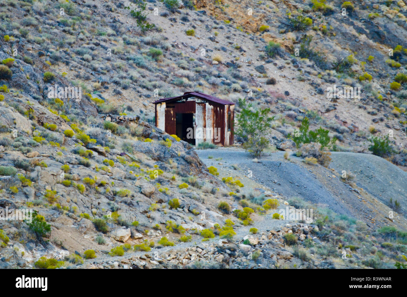 USA, California. Death Valley National Park, Titus Canyon, Leadfield Ghost Town Ruins - Stock Image