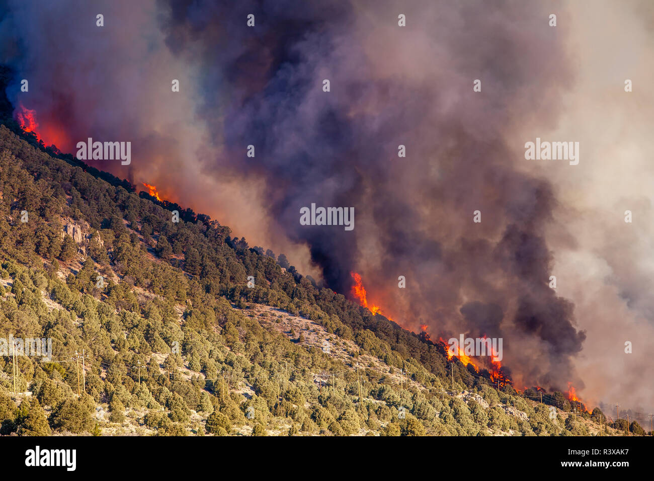 USA, California, Lee Vining. Cal Fire at work on the marina wildfire - Stock Image
