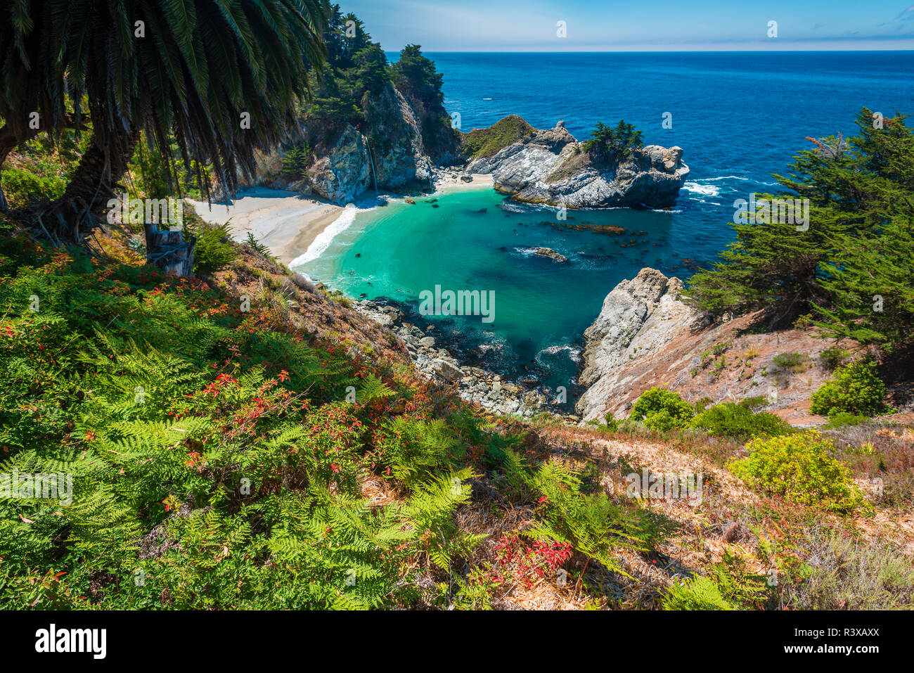 McWay Cove, Julia Pfeiffer Burns State Park, Big Sur, California, USA - Stock Image