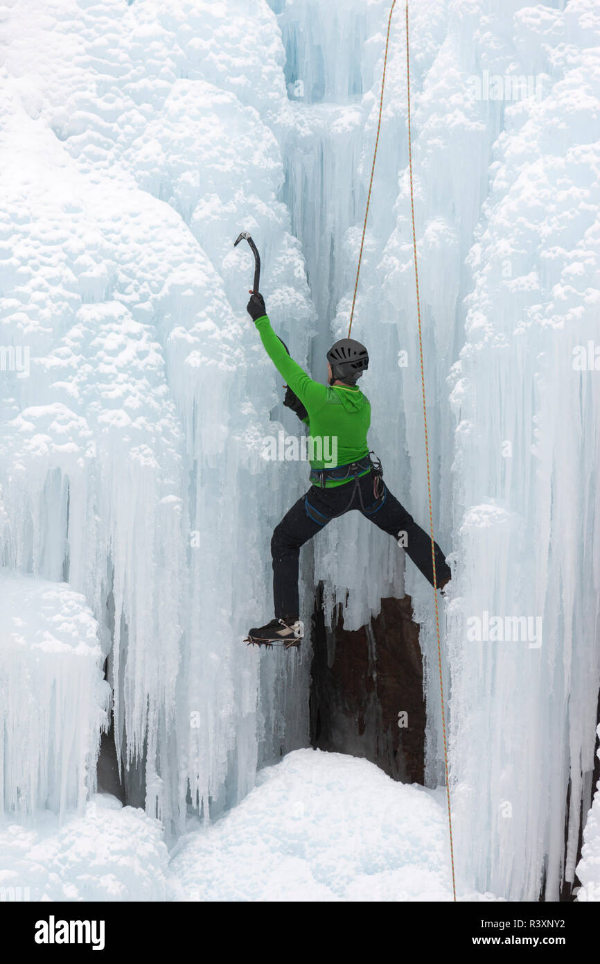 USA, Colorado, Uncompahgre National Forest. Climber ascends icy cliff face. Credit as: Don Grall / Jaynes Gallery / DanitaDelimont. com - Stock Image