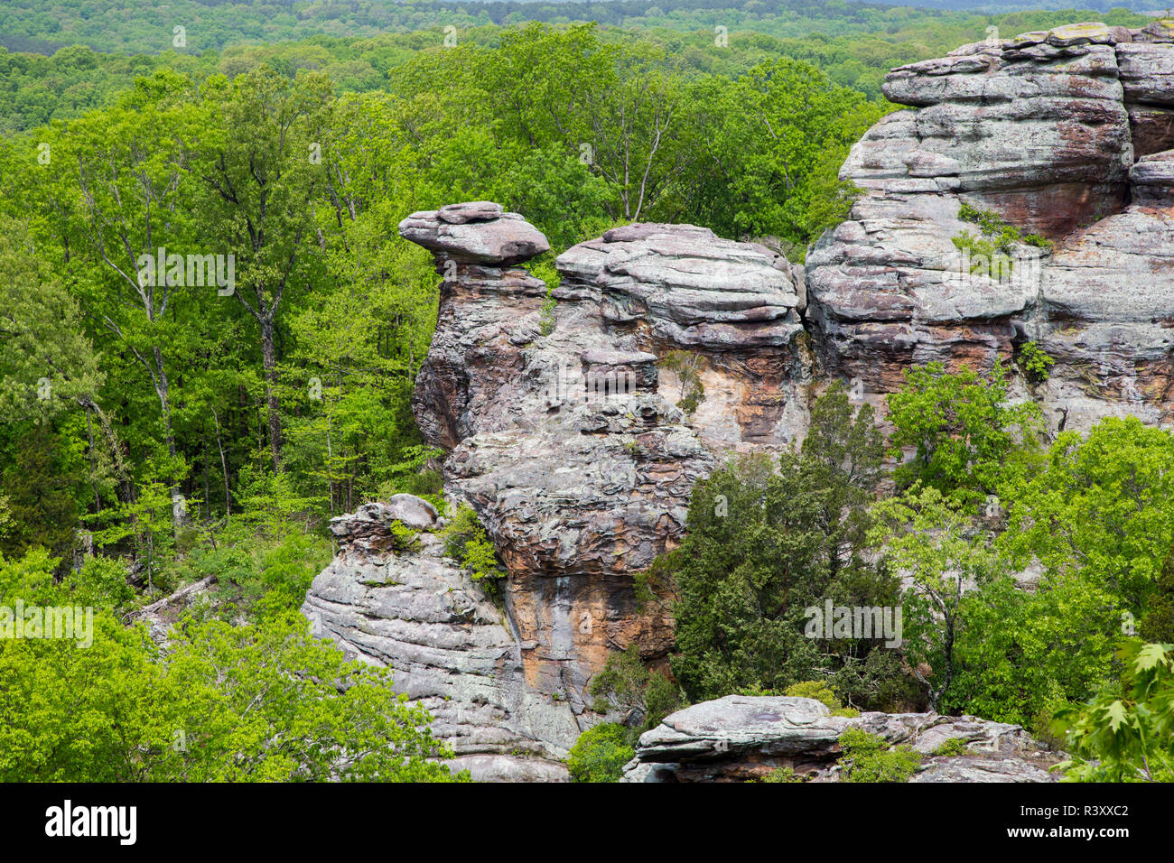 Camel Rock, Garden of the Gods Recreation Area, Shawnee National Forest, Saline County, Illinois - Stock Image